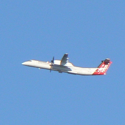 A QANTAS aeroplane was taking off from Canberra Airport at the time, and I had a clear photo of it from the path intersection.