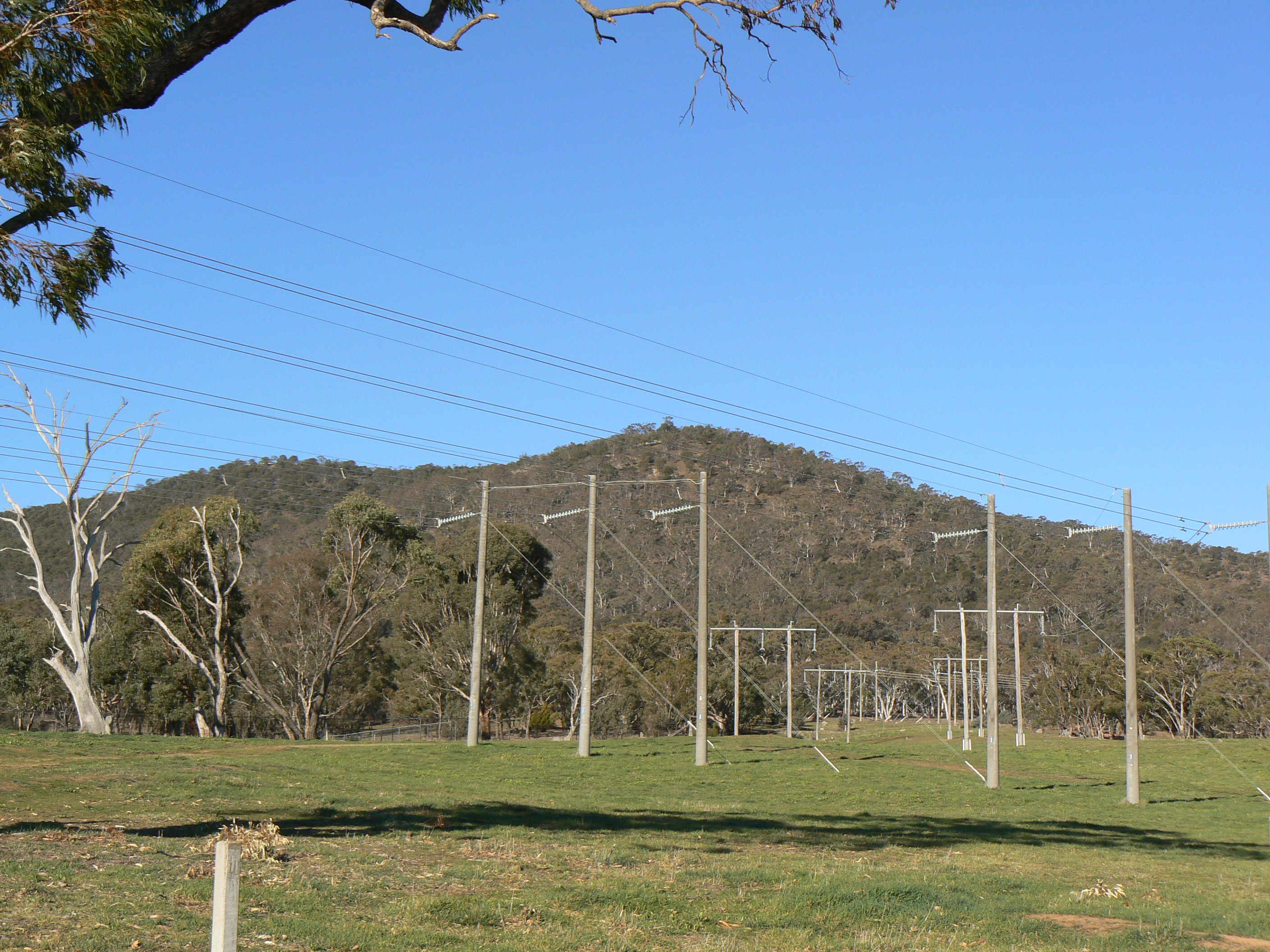 Mount Majura as seen from the Antill Street entrance